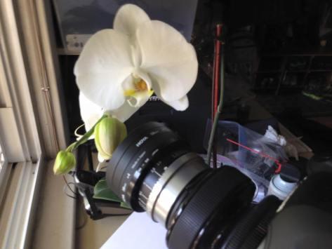 James' Camera (photo credit, James Buffin)